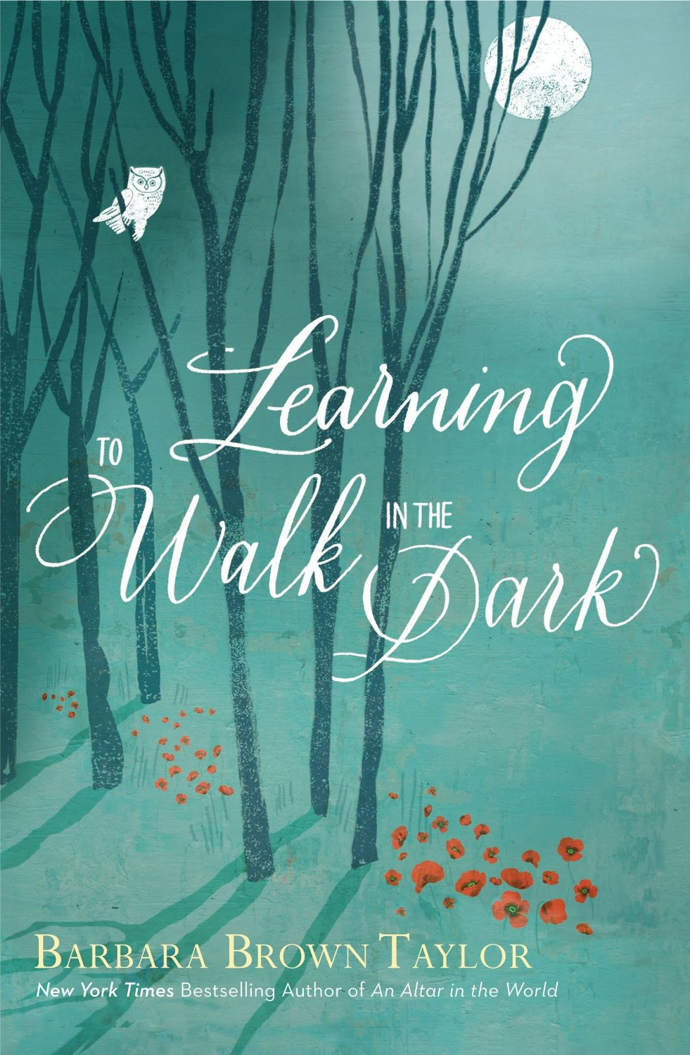 Learning to Walk in the Dark: Barbara Brown Taylor